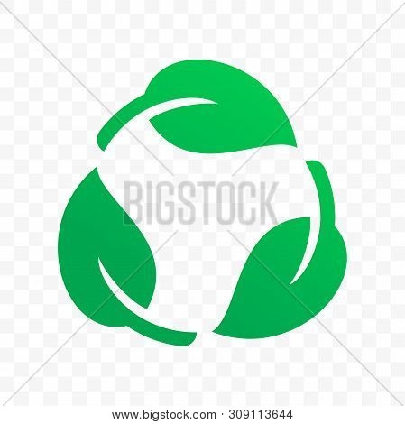 Biodegradable Recyclable Plastic Free Label Vector Icon. Eco Safe Bio Recyclable And Degradable Pack