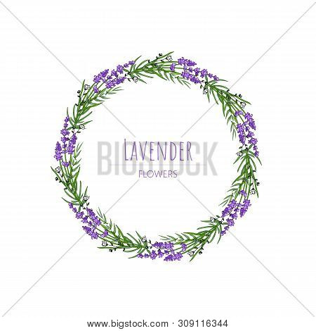 The Lavender Elegant Card With Frame Of Flowers And Text. Lavender Garland For Your Text Presentatio
