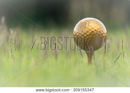 Gold Golf Ball And Pins On The Lush Tropical Greenery