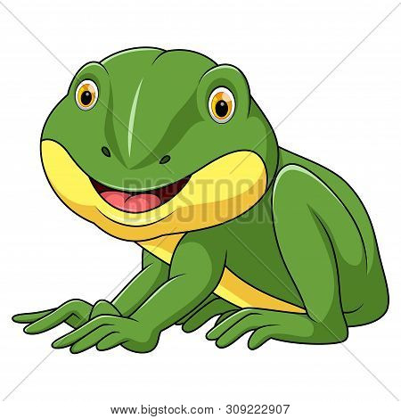 Illustration Of Little Frog Cartoon With White Background