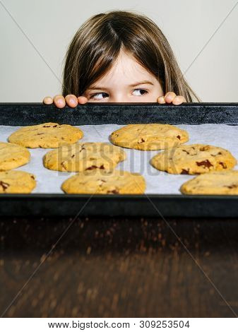 Photo Of A Young Girl Staring At A Tray Of Warm Chocolate Chip Cookies.