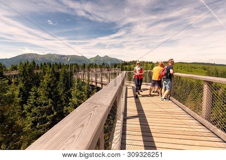 The Treetop Walk Bachledka In High Tatra Mountains, Bachledova Valley In Slovakia On June 29, 2019