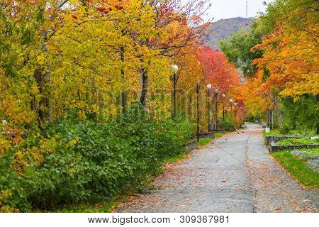 Alley In The Park At Lenin Street. Leaves In Autumn Colors. Mishennaya Mountain In The Background. P
