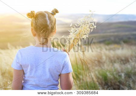 Autumn Little Girl Enjoying Nature On The Field. Beauty Girl Outdoors Holding Spikes Of Wheat And Ea