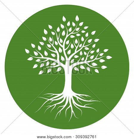 Silhouette Of A Tree With Roots And Leaves In Circle. White Color On Green Background. Vector Illust