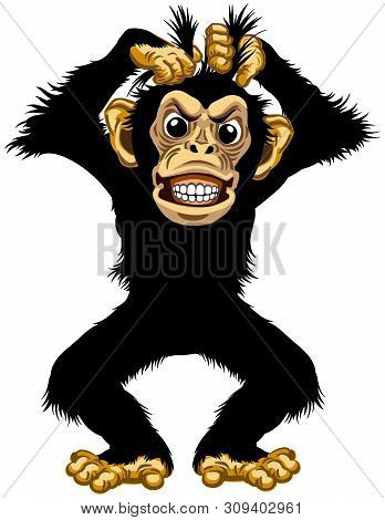 Cartoon Chimp Great Ape Or Chimpanzee Monkey Pulls His Fur Hair Out And Showing Teeth. Angry Or Stre