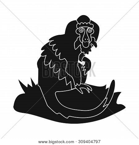 Monkey Images, Illustrations & Vectors (Free) - Bigstock