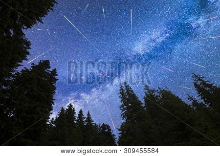 A View Of The Stars Of The Blue Milky Way With Pine Trees Forest Silhouette In The Foreground. Night
