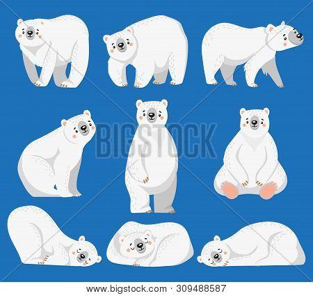 Cartoon Polar Bear. White Bears, Arctic Wild Animal And Snow Bear. Snow Polar Character, Endangered