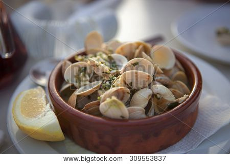 Traditional Italian Mediterranean Seafood, Bucket Of Steamed Clams, Plate With Raw Fresh Vongole Cla