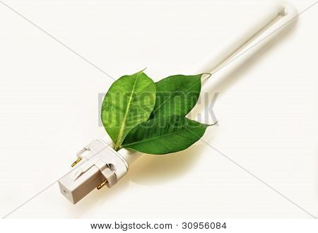 Eco Lamp Energy Saving With Green Values Concept