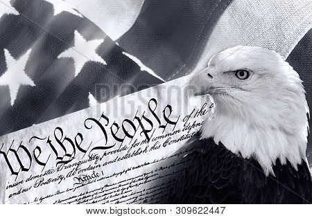 We The People With American Bald Eagle And Flag In Black And White.
