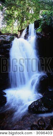 Waterfalls Of Bwindi Forest.
