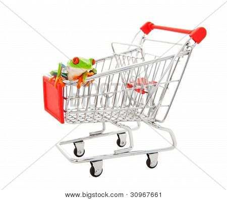 A pet store shopping cart with a red eyed tree frog sitting on it. Shot on white background. poster