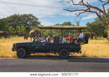Kasane, Botswana - April 8, 2019 : Tourists Observe And Photograph A Herd Of Elephants In Front Of A