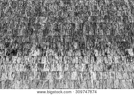 Old Abstract Textured Surface For Background Or For Wallpaper With Monotonous Color.