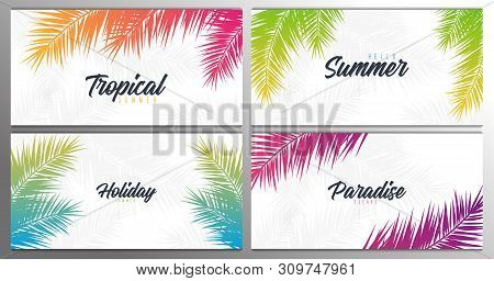 Set Of Summer Tropical Palm Leaves. Exotic Palms Tree. Floral Background.