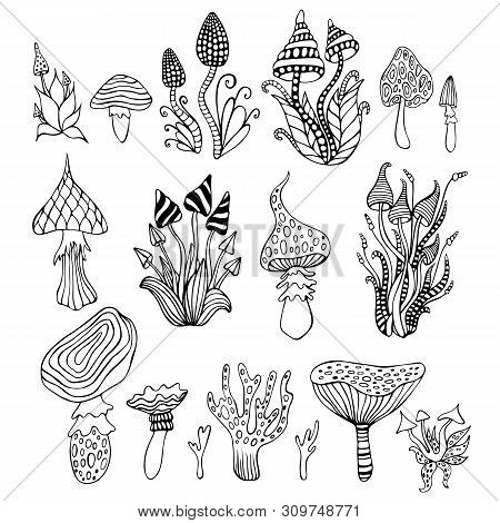 Big Set With Doodle Psychedelic Artistic Abstract Trippy Mushrooms, Isolated Background. Coloring Pa