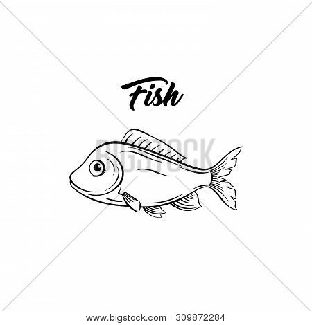Fish Black And White Vector Illustration. Marine Animal With Fins Freehand Sketch. Saltwater Species