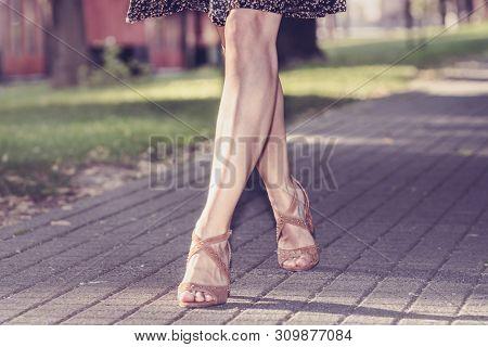 Woman Legs Walk In The Park. Woman Legs Walk In The Park In Brown Shoes. Woman Legs From The Front.