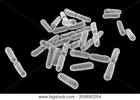Probiotic Bacteria Bacillus Clausii, 3d Illustration. B. Clausii Is A Rod-shaped Gram-positive Aerob