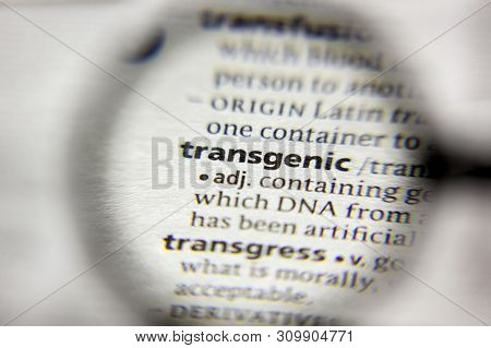 The Word Or Phrase Transgenic In A Dictionary