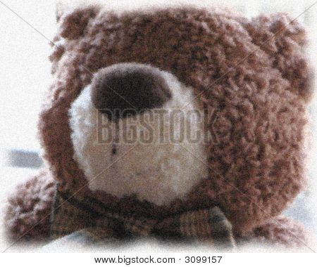 Teddy Bear Ii
