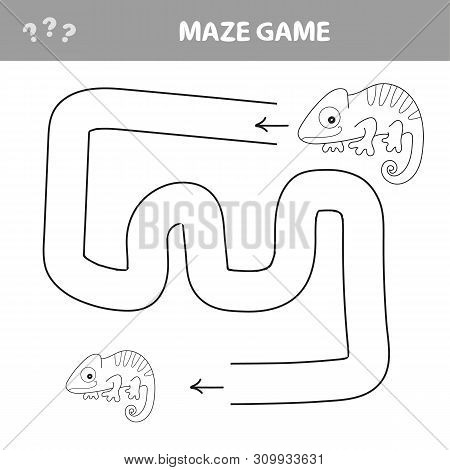 Chameleon Maze Game - Help Chameleon Find His Way Out Of The Maze - Coloring Book