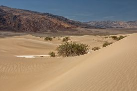Mesquite Flat Sand Dunes, Death Valley National Park, Usa