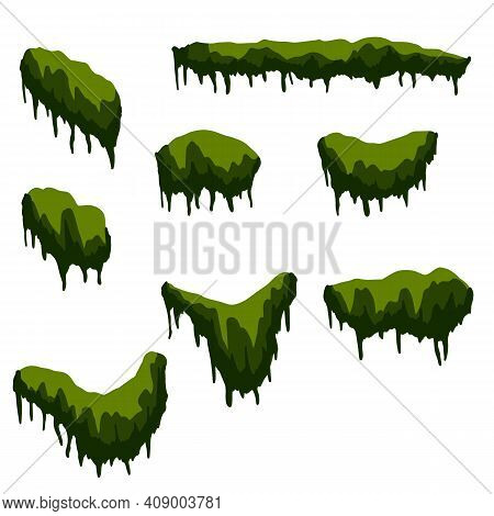 Set Of Branches With Moss And Green Grass. Swamp Bog Vine Of Trees. Marsh Plant. Cartoon Flat Illust