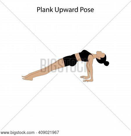 Plank Upward Pose Yoga Workout On The White Background. Vector Illustration