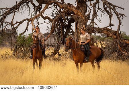 Two Women On Horseback By Dead Tree