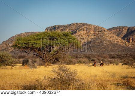Two Women Ride Near Hills Past Acacia