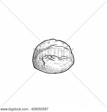 Mozzarella Cheese Ball. Hand Drawn Sketch Style Drawing Of Traditional Italian Cheese. Fresh Soft Bu