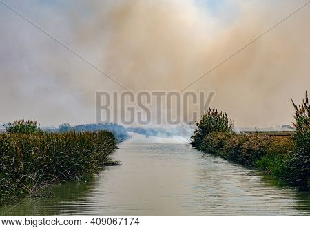 Burning Of Rice Stubble Burning Straw In Rice Farmers In Albufera Valencia Spain, Pollution Environm