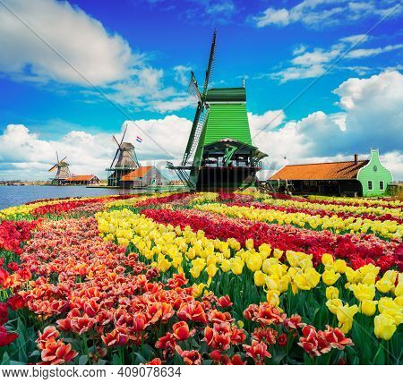 Dutch Scenery With Windmills Over River Of Zaanse Schans At Spring Day With Tulips, Netherlands, Ret