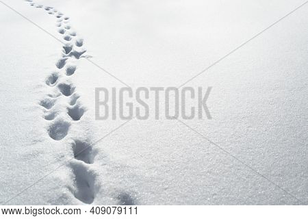 Deep Footprints In The Snow, Copy Space. Snowdrifts After A Snowstorm, Roads Not Cleared.