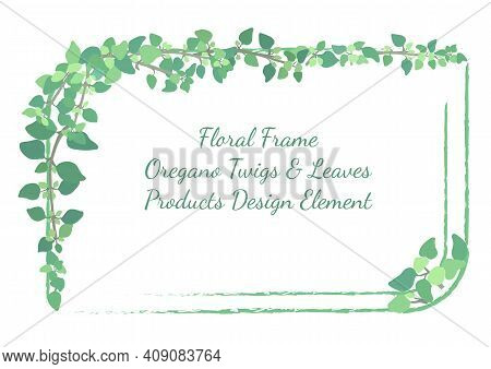 Squarish Frame With Rounded Corners And Hand Drawn Oregano Twigs And Leaves. Rough Brush Strokes For