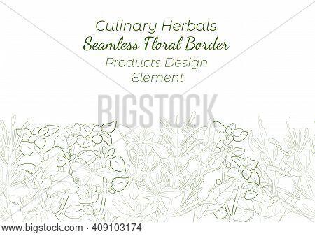 Seamless Border Made With Hand Drawn Culinary Herbals Arranged Horizontally. Thyme, Oregano, Rosemar