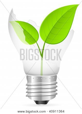 Broken Light Bulb And Leaf