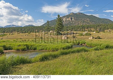 Mountain Stream In A Glacial Valley In Rocky Mountain National Park In Colorado
