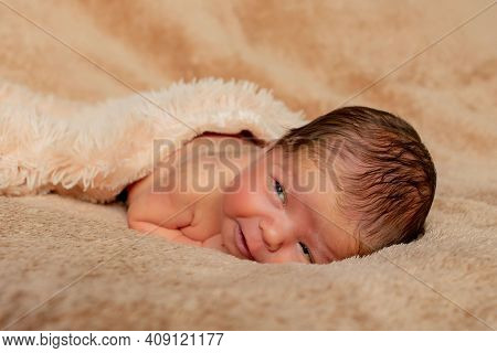 Newborn Baby Sleeping, Resting On Her Own Hands And Elbows, On Brown Background.