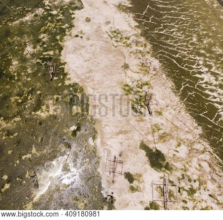 Aerial Shot Of Underwater Seagrass Sea Weed On A Low Tide. Sea Bottom Surface Overgrown With Sea Wee
