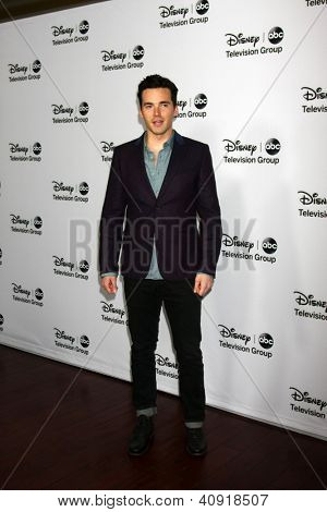 LOS ANGELES - JAN 10:  Ian Harding attends the ABC TCA Winter 2013 Party at Langham Huntington Hotel on January 10, 2013 in Pasadena, CA