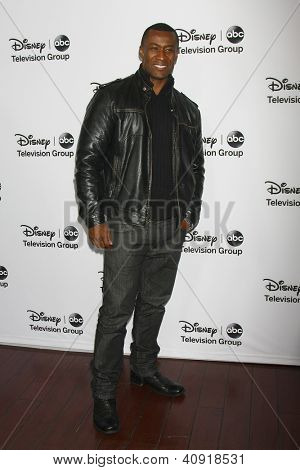 LOS ANGELES - JAN 10:  Sean Blakemore attends the ABC TCA Winter 2013 Party at Langham Huntington Hotel on January 10, 2013 in Pasadena, CA