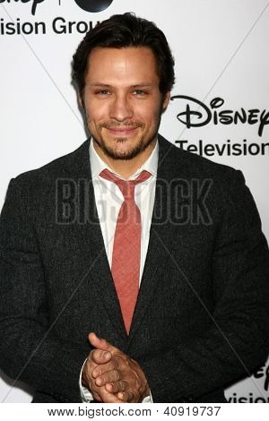 LOS ANGELES - JAN 10:  Nick Wechsler attends the ABC TCA Winter 2013 Party at Langham Huntington Hotel on January 10, 2013 in Pasadena, CA