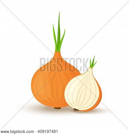 Onion. Whole Onion And Cut Onion. Flat Simple Design. Vector Illustration Of Organic Farm Fresh Vege