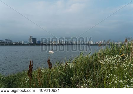 View Of River And City Of Seoul, South Korea From Pretty Park With White Flowers In Foreground And S