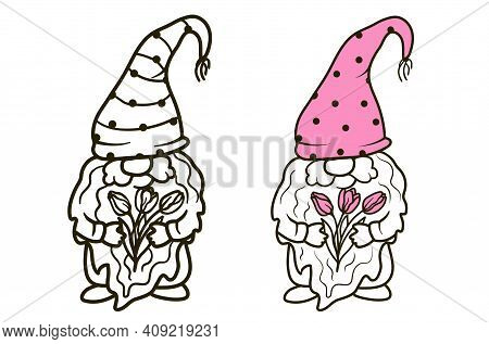 Gnomes With Bouquets Of Tulips. Illustration For Cutting, Coloring And Congratulations