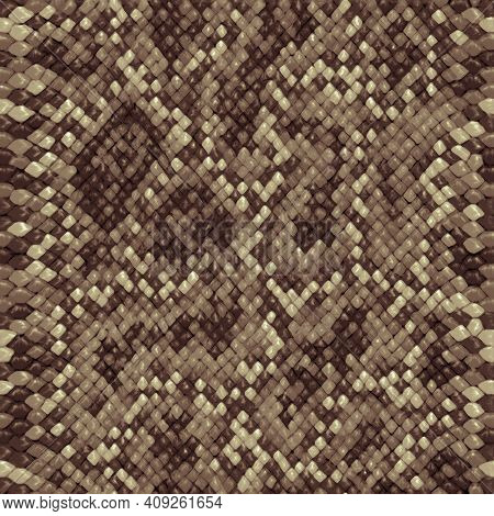 Snake Skin, Reptile Camouflage Pattern For Fabric Design. Animal Print, Python Texture. Abstract Lea